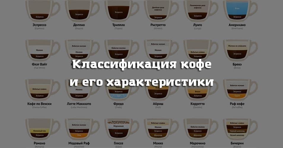 Классификация кофе и его характеристики