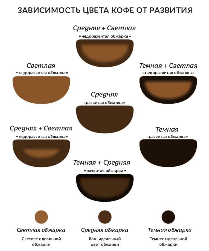 Как цвет кофе зависит от развития